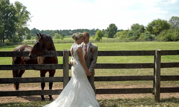 Sterlingbrook Farm Weddings