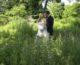 Chelsea & Ken Wedding Video